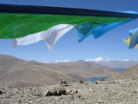 TI_NE_TibetKambaLa 2