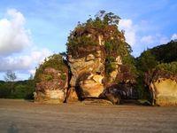 Malaysia Bako Nationalpark