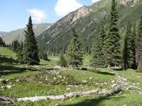 Altyn Arashan Tal, Nationalpark, Kirgistan