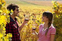Weinregion Chile