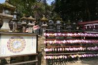 JA_Nara Wakamiya Jinja Shrine_BT_FOC