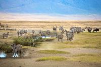 Ngorongoro Krater_Djoser Reisen